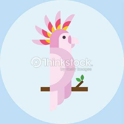 Cartoon tropical parrot wild animal bird vector illustration and wildlife cute feather zoo color nature vivid perch tropics fly fauna jungle pretty macaw