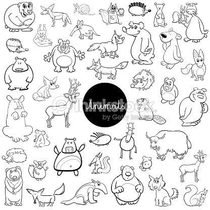 Cartoon Wilde Tier Zeichen Set Farbbuch Vektorgrafik | Thinkstock