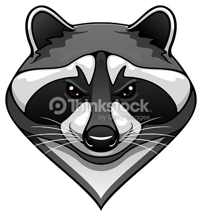 Cartoon Wild Raccoon Animal Mascot Vector Art   Thinkstock