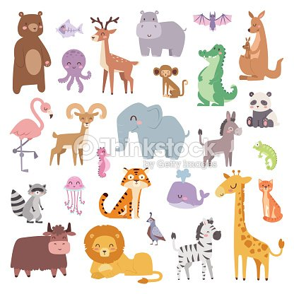 Cartoon zoo animals big set wildlife mammal flat vector illustration : stock vector