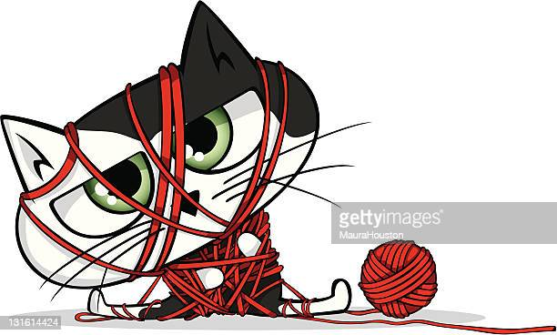 Cat all tied up