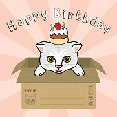 "a cat in box say ""Happy Birthday"" vector illustration"