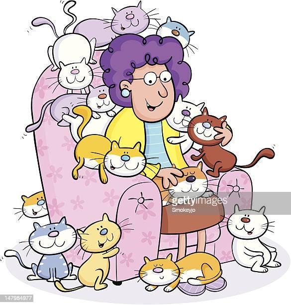 Katze lady