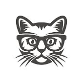 Cat with glasses. geek