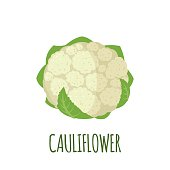 Cauliflower in flat style. Cauliflower vector logo. Cauliflower icon. Isolated object. Vegetable from the garden. Organic food. Vector illustration. Cauliflower on white background