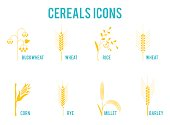 Cereals icons of grain plants. Set of icons with rice, wheat, corn, oats, rye, barley, wheat, buckwheat, corn, seeds.