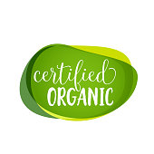 Certified Organic lettering on green blots. Promotion element. Handwritten and typed text, calligraphy. For logotypes, posters, leaflets and brochures.
