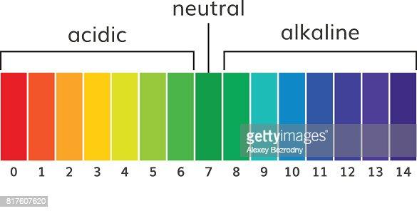Chart Ph Alkaline And Acidic Scale Vector Vector Art  Thinkstock