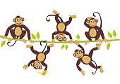 Cheerful monkeys frolic on a vine. Vector illustration.