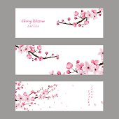 cherry blossom collection , greeting cards , seamless texture , japanese floral pattern