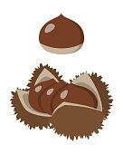 Illustration of chestnut.