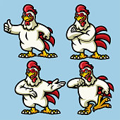 vector set of chicken Mascot