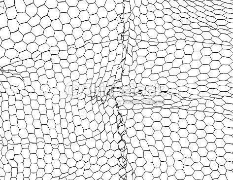 Chicken Wire Vector Background Illustration Texture Vector Art ...