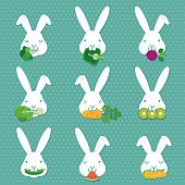 EDUCATION,LEARN ABOUT HOW TO FEED RABBIT, vector design