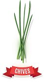 Chives stems and comic shaded ribbon banner isolated on white background. Kitchen herbs and spices banner isolated on white background.