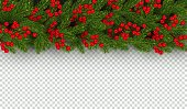 Christmas and New Year border of realistic branches of Christmas tree and holly berries Horizontal element for festive design isolated on transparent background Vector illustration