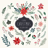 Christmas floral collection with winter decorative plants and flowers