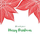Christmas greeting card template with hand drawn Poinsettia flower on white background.