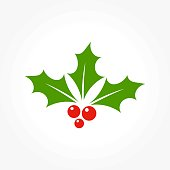 Christmas holly berry leaves iconl illustration