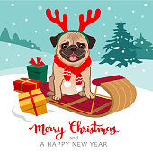 Christmas pug dog cartoon illustration. Cute pug puppy wearing red scarf and antlers sitting on toboggan with gifts, winter snowy hills with trees in background. Pets, dog lovers, Christmas theme.