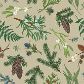 Vector seamless pattern with various coniferous, white and blue berries and leaves. Vintage Christmas background. Kraft.