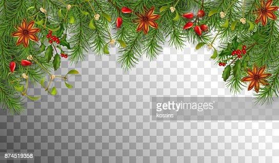 Weihnachten Fichte Grenze : Vektorgrafik