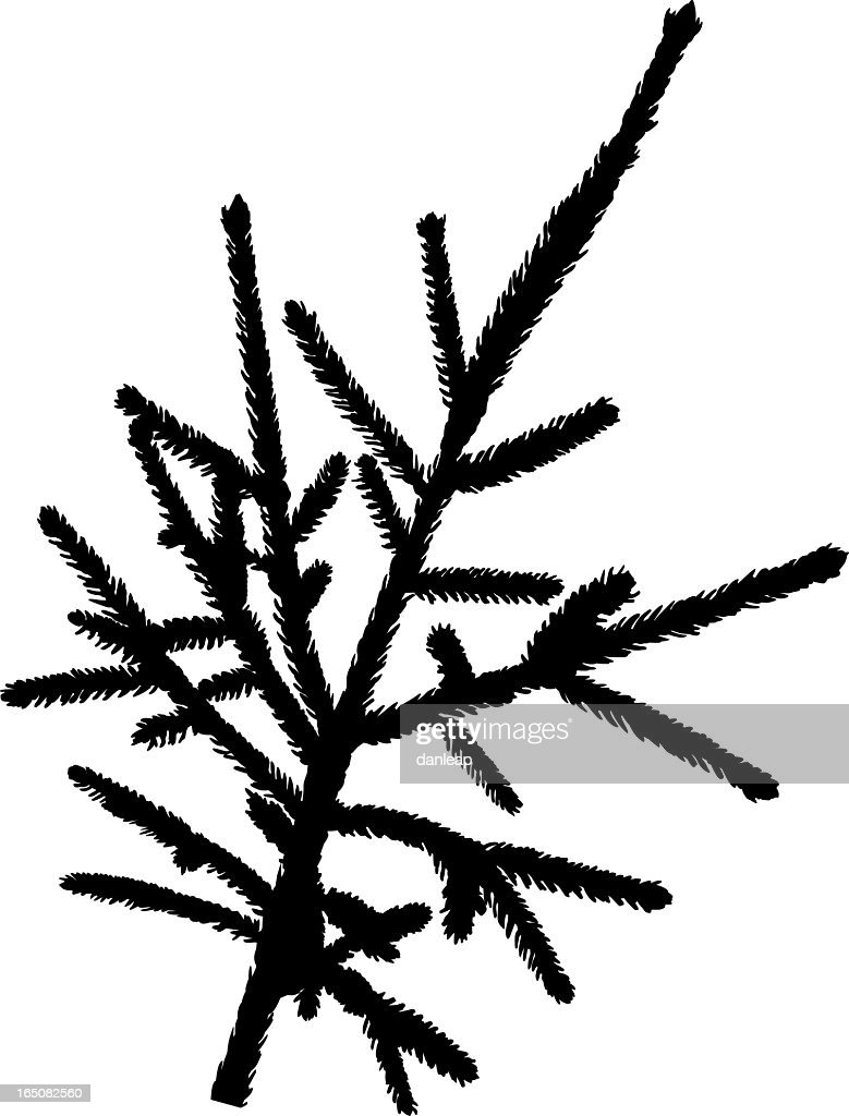 christmas tree branch vector - photo #18