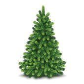Vector illustration of detailed Christmas tree isolated on white background