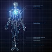 Circuit composed of human graphics.