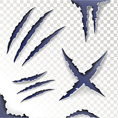 Claws animal Scratches on a transparent background. Set. Vector illustration.