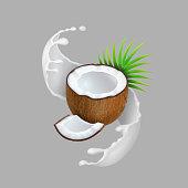Coconut and milk splash. Natural fruit. Realistic vector illustration.