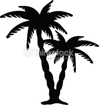 Des palmiers de noix de coco silhouette noire isol sur fond blanc clipart vectoriel thinkstock - Palmier clipart ...