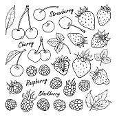Set of vector fruits and berries: cherry, strawberry, raspberry, blackberry. Hand drawn collection for design, isolated on white. Black lines sketch