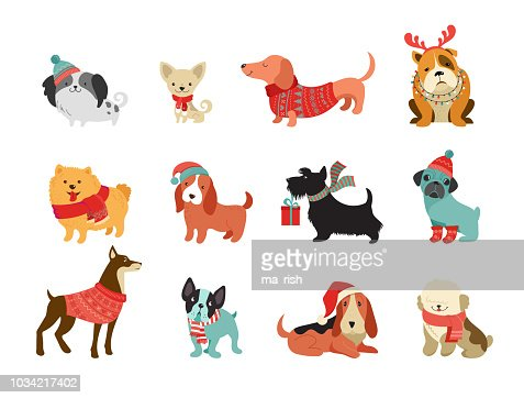 Collection of Christmas dogs, Merry Christmas illustrations of cute pets with accessories like a knited hats, sweaters, scarfs : Arte vetorial