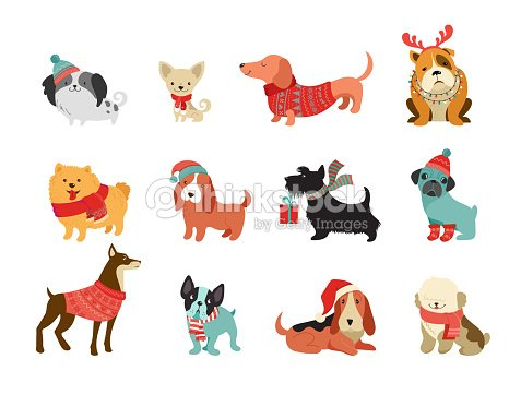 Collection of Christmas dogs, Merry Christmas illustrations of cute pets with accessories like a knited hats, sweaters, scarfs : stock vector
