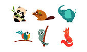 Collection of cute animals, panda bear, beaver, parrot, raccoon, fox vector Illustration isolated on a white background.