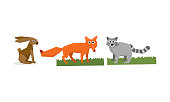 Collection of cute geometric animals, hare, fox, raccoon vector Illustration isolated on a white background.