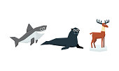 Collection of cute geometric animals, shark, fur seal, elk vector Illustration isolated on a white background.