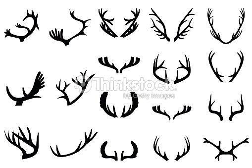 Collection of deer horns vector art thinkstock - Dessin bois de cerf ...