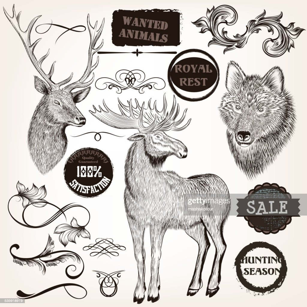 Collection of hand drawn animals, labels and swirls in vintage : Vector Art