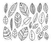 Collection of hand drawn leaves. Ink illustration. Line design. Doodle style. Elements for cards, posters or advertisement.