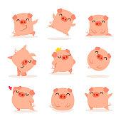 Collection of little piggy. A variety of little piggy design.
