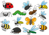Friendly smiling cartoon bee and bug, butterfly and caterpillar, fly and ladybug, spider and mosquito, wasp and ant, bumblebee, dragonfly and hornet characters. Colorful funny insects for t-shirt prin
