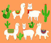 Colorful illustration set of funny and cute lamas and alpaca, cactus elements on orange background in cartoon flat style