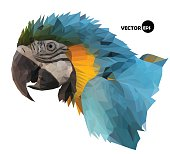 colorful macaw parrot`s head visual identity in low polygon style on white background, vector illustration