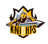 A colorful symbol, a sticker, an emblem, a knight is attacking with a sword. Gold armor of the knight, paladin, swordsman, warrior, soldier, shield, lettering. Mascot sports club, vector illustration