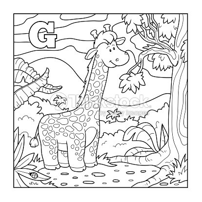 coloring book giraffe colorless alphabet for children letter vector art