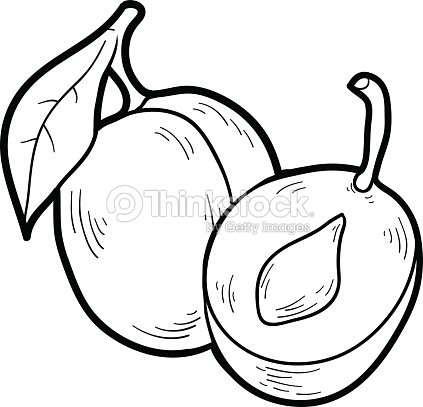Coloring Book Fruits And Vegetables Plum Vector Art