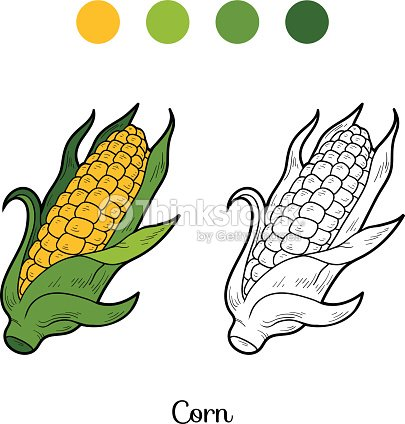 Coloring Book Fruits And Vegetables Corn Vector Art