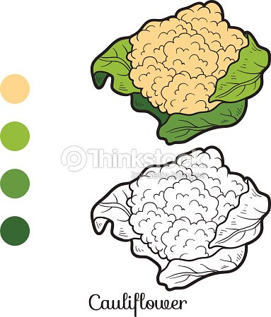 Coloring Book Fruits And Vegetables Cauliflower Vector Art